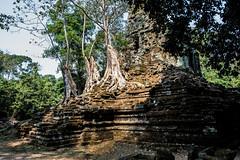 Angkor   |   Preah Palilay (JB_1984) Tags: preahpalilay temple remains ruins decay stone light shadow tree root tetrameles templesofangkor khmer angkorthom siemreap krongsiemreap cambodia cambodge kampuchea nikon d500 nikond500