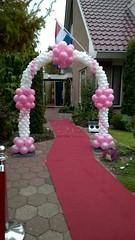 ballonnenboog wit roze