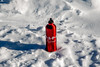 2018_RTR_Alaska Retreat_Wayne 3 (TAPSOrg) Tags: taps tragedyassistanceprogramforsurvivors tapsretreat retreat widows survivingspouses significantothers anchorage alaska 2018 military outdoor horizontal snow winter waynemiller roguephotography detail closeup waterbottle