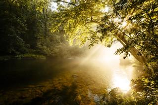 Morning Rays[08.03.17]