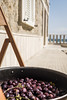 Olives (danfaiz) Tags: olives italy food mediterranean photography fujifilm sicily sun diet