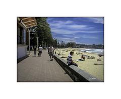 Manly Promenade (Explore) (TOXTETH L8) Tags: manly sydney promenade northshore governorarthurphillip beach pacificocean cbdsydneyboatboatsbridebuildingcarcarscatcatscruiseshipsdogsgroomhomehousemotorbikeplantplantstrucksweddingweddings