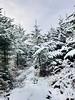 Winter wonderland #ireland (Mgk56) Tags: natureporn nature hiking winterwonderland wonderland snow tipperary munster ireland