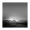 Underscore (Nick green2012) Tags: lone tree tuscany blackandwhite minimal landscape square fields