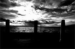 000420 (la_imagen) Tags: langenargen sw bw blackandwhite siyahbeyaz monochrome bodensee laimagen lakeconstanze lagodiconstanza lagodeconstanza silhouette siluet