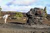 Checking the Roots (wyojones) Tags: trails maunaulu hawai'ivolcanoesnationalpark treemolds ʻōhiʻatrees lavaflows basalt cooling solidification forest trees encased moldsoflava lavatrees hoodoos david family geology dentist