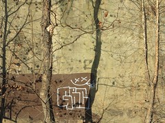 Das Schreiben im Walde / Creative Trees (bartholmy) Tags: richmond va pipeline walk wand wall streetart graffiti tag übermalung overpainting buffed buffing baum tree schatten shadow minimalism minimal minimalismus minimalistisch abstrakt abstract