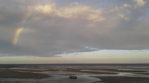 lowtide_morning