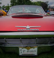 Thunderbird 1965 (frankmh) Tags: car vintagecar thunderbird 1965 sofiero helsingborg skåne sweden outdoor