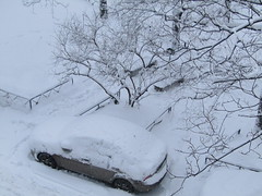 Great! Winter creatives! (VERUSHKA4) Tags: yard neve car hiver winter day january canon europe russia moscow white bench iron fence object metallic ground nature bw trunk season city cityscape vue view ville two deux branch wheels