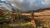 Seek ....and you will find ! (Einir Wyn Leigh) Tags: landscape rural lake mechanism iron wheel ubboat wales history