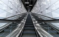 //`´\\ (Blende1.8) Tags: light licht stairway stairs aufgang metro underground urban escalator symmetry symmetrie ubahn subway escalators untergrund düsseldorf duesseldorf architecture architektur perspective wideangle sony 1224mm emount alpha ilce7rm2 a7rii a7rm2 sel carstenheyer nrw germany deutschland line lines