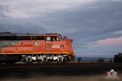 Follow Your Nose (R Class Productions) Tags: goods freight train victorian railways grain southern shorthaul railroad ssr s class t bulldog streamlined emd 657c profile