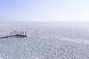 Sea of ice (B℮n) Tags: vlietermonument afsluitdijk breezanddijk winter ijs ice frozen sea ijsselmeer waddenzee aanmeerplaats beijsd bevroren brugdijk hekhekwerk kou koud koude loopvlonder meer meerpaal meerpalen monument ochtend ochtendkou paal palen stilvlonder vriest vriezen zonsopgang cold morning holland netherlands pier noord layer icing icicles 2march2018 2maart2018 artic 100faves topf100