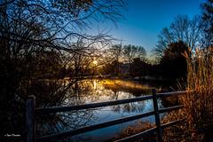 Justifies The Name. (Igor Danilov Philadelphia) Tags: lake mirror truly magic winter сказка ducks passing blue sky trees water sunrise rising aurora reflection fance mist