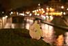(Laurent Nicosia) Tags: pigeon oiseau paris parisbynight bokeh lumières lights nuit night