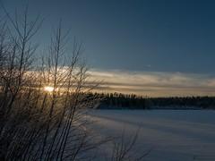 Embrace the light (kentkirjonen) Tags: lumix fz300 sweden sverige dalarna wood trä sun sol solen snow snö tree trees träd solnedgång sunset winter vinter lake tjärn sjö moln cloud clouds