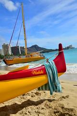 10 (4) (Ben Molloy Photography) Tags: benmolloy ben molloy photography travel nikon d800 hawaii hawai honolulu waikiki