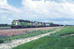 rr10493 (George Hamlin) Tags: wyoming rozet railroad freight train coal empty hoppers burlington northern santa fe westbound emd sd60m diesel locomotive 9219 pale face grass sky clouds photo decor track george hamlin photography