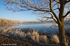 Brown and blue (Desiree van Oeffelt) Tags: netherlands nederland landscape landschaft landscapes lake lakes blue braun water tree trees nature outdoors desireevanoeffelt hiking hike canon sky skies sun sunlight sunshine winter colors color colours colour cold