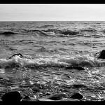 La mer et rien d'autre / The sea and nothing else thumbnail
