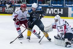 Thomas Vilstrup Andersen (Daniel Stentz) Tags: herning bluefox blue fox herningbluefox ishockey icehockey denmark danmark metalligaen metal ligaen dansk rødovre mighty bulls