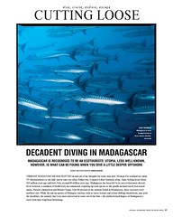2---national-geographic-traveller_-diving-in-madag_000
