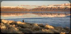 Sunset (Jami Bollschweiler Photography) Tags: sunset photography utah west desert antelope island reflections landscape bear river migratory great salt lake sunrise pineview