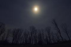 Blue Moon (Matt Champlin) Tags: moon bluemoon midwinter january blues blah winter cold home rural life astronomy night nighttime canon 2018 flx skaneateles