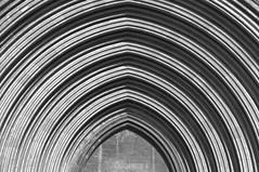 La Catedral (Kasabox) Tags: girona catedral cathedral church iglesia esglesia building arquitectura aqrchitecture black white bn luz llum light