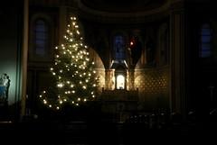 In church, Potsdam Germany (samsonov.eugene2006) Tags: christmastree germany potsdam church j1 nikon