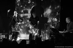 Stucky con Carne: live im Jazzit Musik Club Salzburg (jazzfoto.at) Tags: wwwjazzfotoat wwwjazzitat stuckyconcarne jazzitsalzburg jazzitmusikclubsalzburg jazzitmusikclub jazzfoto jazzfotos jazzphoto markuslackinger jazzinsalzburg jazzclubsalzburg jazzkellersalzburg jazzclub jazzkeller jazzit2018 jazz jazzlive livejazz konzertfoto concertphoto liveinconcert stagephoto greatjazzvenue greatjazzvenue2018 downbeatgreatjazzvenue salzburg salisburgo salzbourg salzburgo austria autriche blitzlos ohneblitz noflash withoutflash sony sonyalpha sonyalpha77ii alpha77ii sonya77m2 sw bw schwarzweiss blackandwhite blackwhite noirblanc bianconero biancoenero blancoynegro zwartwit