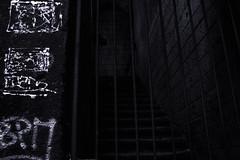 (Heywok) Tags: bianco nero blackandwhite black white noire napoli naples graffiti scale stairs prison iron bn
