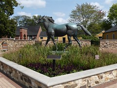 Warrenville, IL, St. James Farm, DuPage County Forest Preserve, Race Horse Sculpture (Mary Warren 9.8+ Million Views) Tags: warrenvilleil stjamesfarm dupageforestpreserve farm art bronze sculpture horse