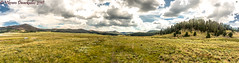 Valle Grande Panorama, from Visitor Contact Station, Valles Caldera, New Mexico (vdwarkadas) Tags: vallegrande vallescaldera newmexico nature valley grass green clouds sony sonya6000 sonyilce6000 panorama