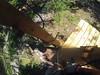 G0121332 (harleyhurricane1) Tags: line zip zipline ziplinepark dadecityflorida treehoppers centralflorida largestziplineparkincentralfl dadecity
