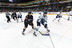 "Kansas City Mavericks vs. Florida Everblades, February 18, 2018, Silverstein Eye Centers Arena, Independence, Missouri.  Photo: © John Howe / Howe Creative Photography, all rights reserved 2018 • <a style=""font-size:0.8em;"" href=""http://www.flickr.com/photos/134016632@N02/39491123165/"" target=""_blank"">View on Flickr</a>"