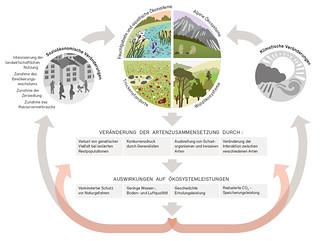 Auswirkungen auf die Biodiversität / Impacts on biodiversity