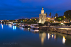 Tower Reflection - Seville, Spain (www.caseyhphoto.com) Tags: d800 europe andalusia seville spain nikon nikkor eu european spanish andalucia sevilla travel traveling traveler traveller travels traveled wanderlust wandering explore explorer exploring adventure adventurer adventuring photography photographer artist culture cultura cultural tourism tourist vacation holiday history historic tower golden oro torre river guadalquivir blue hour sky cielo nubes clouds reflejos reflection urban long exposure iberian mediterranean viajes