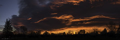 Molten Brush Strokes (courtney_meier) Tags: bouldercounty colorado clouds dawn morning morninglight silhouette sunrise boulder
