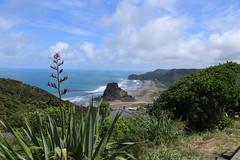 Piha, Auckland, NZ (christineNZ2017) Tags: piha lionrock famous auckland newzealand westauckland waitakere