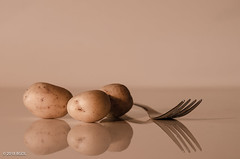Small Potatoes! (BGDL) Tags: lightroomcc nikond7000 bgdl niftyfifty afsnikkor50mm118g potatoes vegetable fork reflections small week3 weeklytheme flickrlounge 52in2108challenge 37three