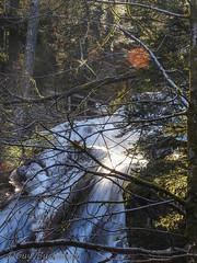 La grande cascade de Tendon1803051312-2 (opa guy) Tags: continentsetpays europe france grandest lorraine vosges grandecascadedetendon