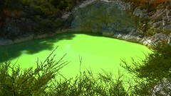The green Lake (rosch2012) Tags: neuseeland newzealand water landscape lake teich see bunt colored coloured green geothermal geothermie vulkan volcan heis hot busch bush fels rock klippe cliff milchig milky daylight tageslicht