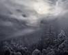 Moon Dance (Tarun Kotz) Tags: yosemite yosemitenationalpark nature moonrise snow winter winterwonderland california tkottary moon ngc