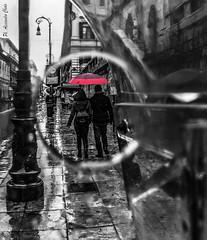 points of view (alessandrochiolo) Tags: sicilia siciliabedda street streetphoto sicily streetphotografy sky streetphotography riflessi rain raining rainy fujix30 fuji fujifilm biancoenero bw bn blackandwhite way