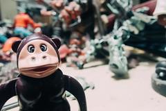 Monkey Primate (La Chachalaca Fotografía) Tags: monkey mono primate singe simian toy plastic plastica plastique olympus tg5