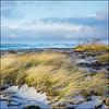 Måkläppen - Fuji Reala 100 (magnus.joensson) Tags: sweden swedish skåne måkläppen beach shore winter december sunset sea rolleiflex fuji reala 100 exp c41 6x6 medium format