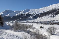 la plana - Livigno (quanuaua) Tags: ifttt 500px frozen winter italy ski snow mountain glacier snowfall snowy slope peak range resort snowcapped livigno
