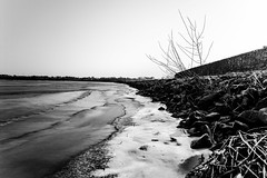 ice cold bank of the vecht. (Arjan Grendelman) Tags: arjangrendelman lightroom6 landscape hardenberg kodakdcsproslrn nikkoraf24120d